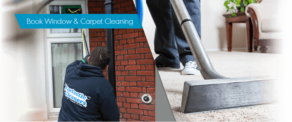 Window Cleaning + Carpet Cleaning