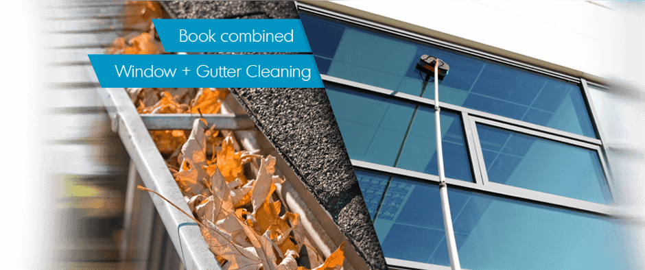 Window Cleaning + Gutter Cleaning